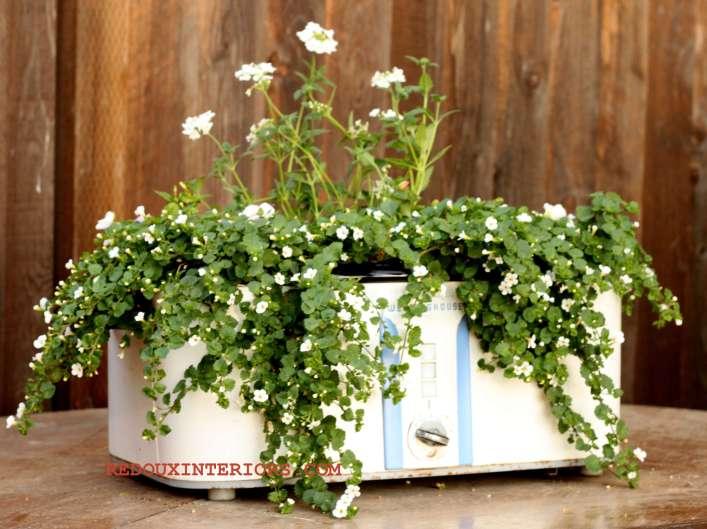 Crock Pot Planter 3