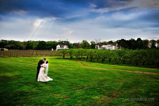 andy-lisa-niagara-on-the-lake-wedding.jpg?fit=669%2C446