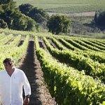 bruwer in vineyard