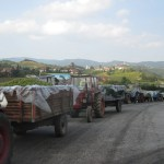 Tractors lined up waiting to be processed