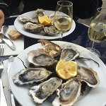 Oysters-400