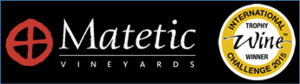 Matectic Logo Black