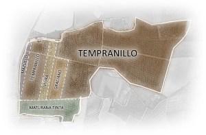 vineyards-map-carlos-serres