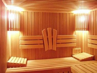sauna room history