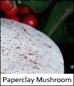 Paperclay Mushroom