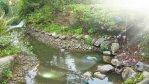 Centre Parcs, Elveden Forest Review