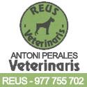 Antoni-perales