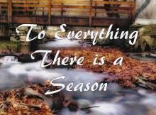 SeasonBlogPhoto
