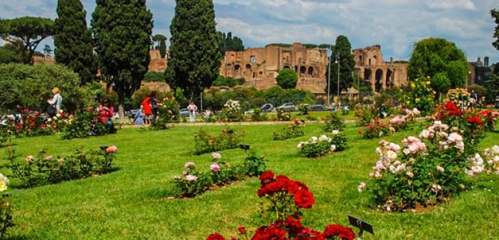 http://i2.wp.com/www.reidsitaly.com/images/lazio/rome/sights/roseto-comunale-long.jpg?resize=728%2C351