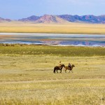 Die Mongolei zu bereisen ist nicht einfach. Warum Du's trotzdem tun solltest!