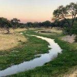 Rundreise Botswana – Chobe Nationalpark, Makgadikgadi Pans & Moremi Game Reserve