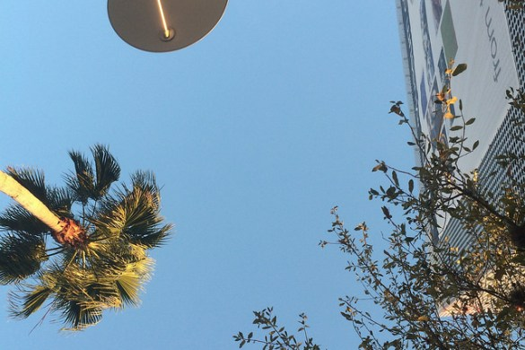 Staring up at a clear blue winter sky, at yoga in Downtown Tampa