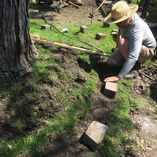 blog-treering2