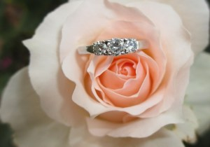 ring on rose