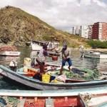 La pesca de especies del mar se redujo 54,22% el año pasado, según la memoria y cuenta del Ministerio de Agricultura y Tierras.