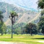 70 hectáreas del campo de golf