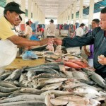 La diputada a la Asamblea Nacional, Dinorah Figuera (MUD - Miranda), acudió al Mercado de Quinta Crespo donde denunció que algunos rubros se han incrementado más 1.000% en los últimos ocho años.