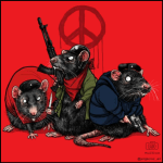 colectivos armados ratas