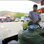 gasolina cuccuta