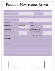 Periodic Monitoring Report Template