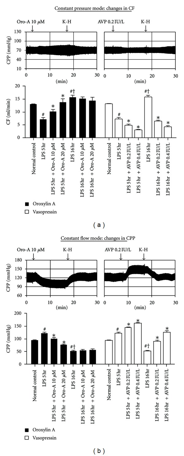 Cosmopolitan Coronary Arterial Ction Ofisolated Hearts From Endotoxemic Representative Tracings Effects And Avp On Effects And Avp On Coronary Arterial houzz-03 What Does Cf Mean