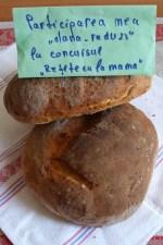 Paine de casa cu cartofi – reteta nemţească by dana_radu23