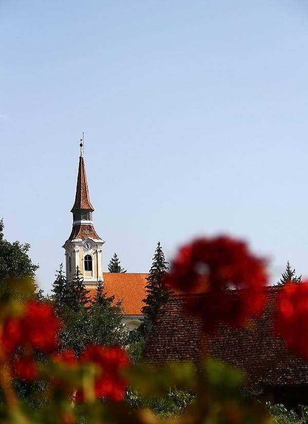 crit, transilvania