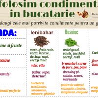 Cum folosim condimentele in bucatarie--Infografic