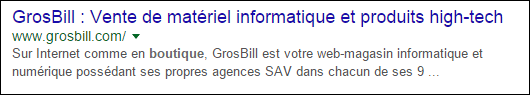 les résultats de grosbill.com dans google sont efficace