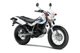 2013-Yamaha-TW200 (Custom) (2)