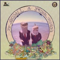 Ty Segall and Mikal Cronin: Reverse Shark Attack Review