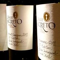 Degustação de vinhos da Viña Valle Secreto