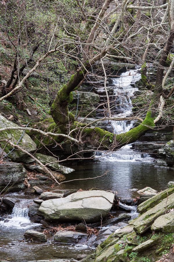 A typical Ikarian stream, in this case without snowdrops.