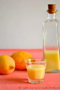 Crema di limoncello bimby 4