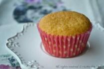 Cupcake senza Nichel bimby 2