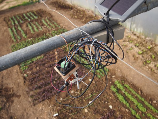 Sensor mounted in polytunnel