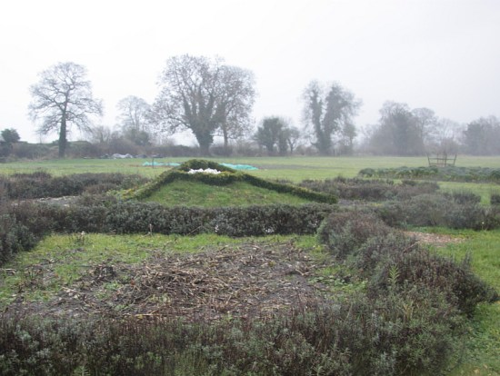 I visited the guys doing Shumei farming in Wiltshire - being Japanese they had this image of Mount Fuji on the site, though the December rain doesn't do it justice