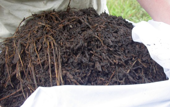 Start with a wodge of compost in a net curtain