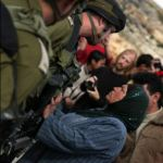 Israeli Peace Activist's Head Slammed into IDF Jeep During Anti-Wall Demonstration