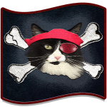 New Salty Tails Pirate Image