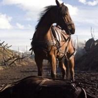 [Film - Critique] Cheval de Guerre de Steven Spielberg :  lourd et appuyé