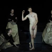 [Spectacle - Critique] The Great Tamer / Dimitris Papaioannou