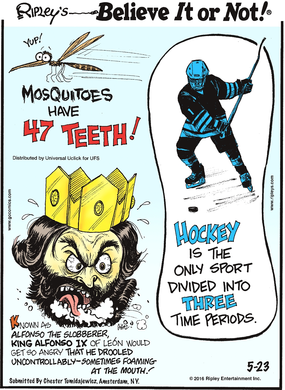 Mosquitoes have 47 teeth! -------------------- Known as Alfonso the Slobberer, King Alfonso IX of Leon would get so angry that he drooled uncontrollably—sometimes foaming at the mouth! Submitted by Chester Tumidajewicz, Amsterdam, NY. -------------------- Hockey is the only sport divided into three time periods.
