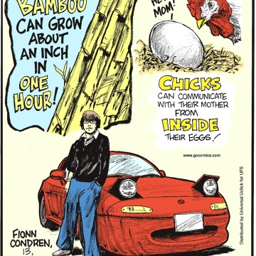 Bamboo can grow about an inch in one hour! -------------------- Chicks can communicate with their mother from inside their eggs! -------------------- Fionn Condren, 13, of county Wicklow, Ireland, is already a skilled stunt driver—he was behind the wheel by age eight!
