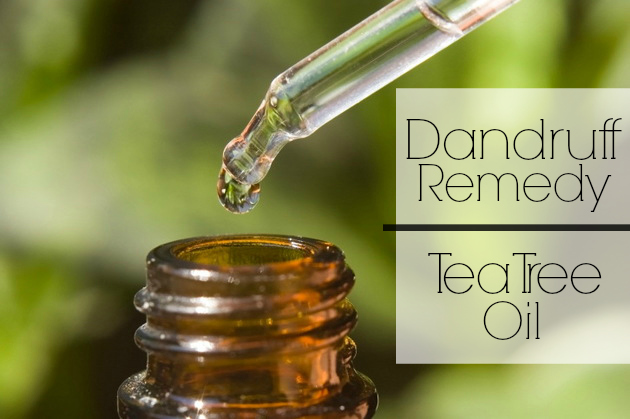 get rid of dandruff with tea tree oil