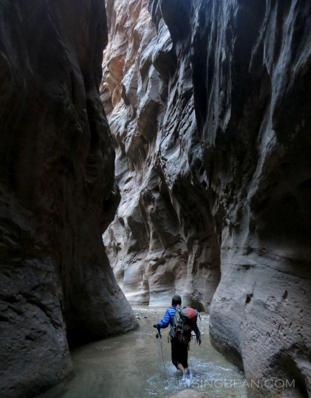 Zion Narrrows Hike