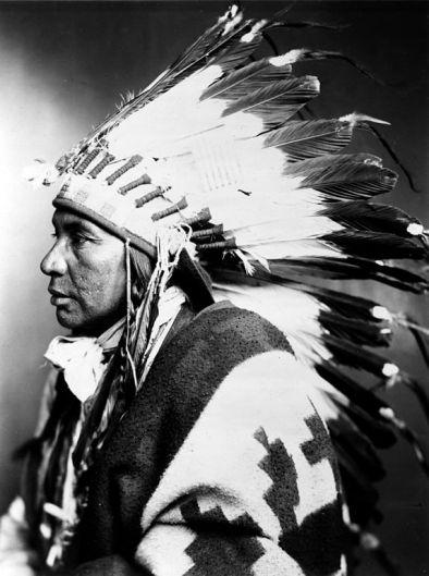 Sego, Shoshone (1899)