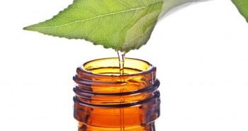 Tea-Tree-Oil-Bottle-1-1024x752