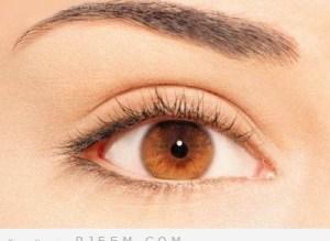 الوان العيون وما يناسبها من مكياج