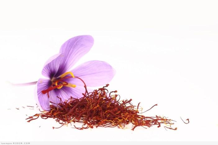 الزعفران - فوائد الزعفران الصحية